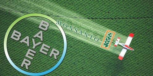 Bayer-Monsanto, Merger
