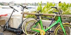 Littering, E-Bike, Shared Bike, Lake Zürich, Zürisee