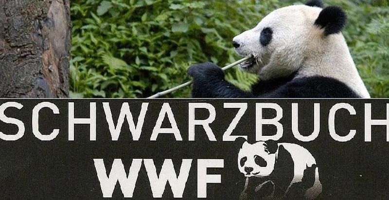 Schwarzbuch_WWF_Panda1-1