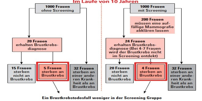 Screening_GrafikKopie