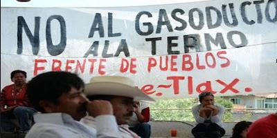 Protest_BiodiversidadlaKopie