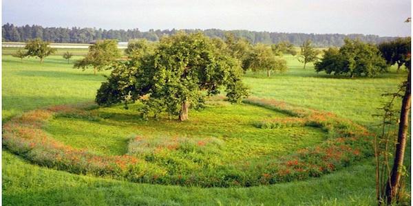 Landschaftspflege