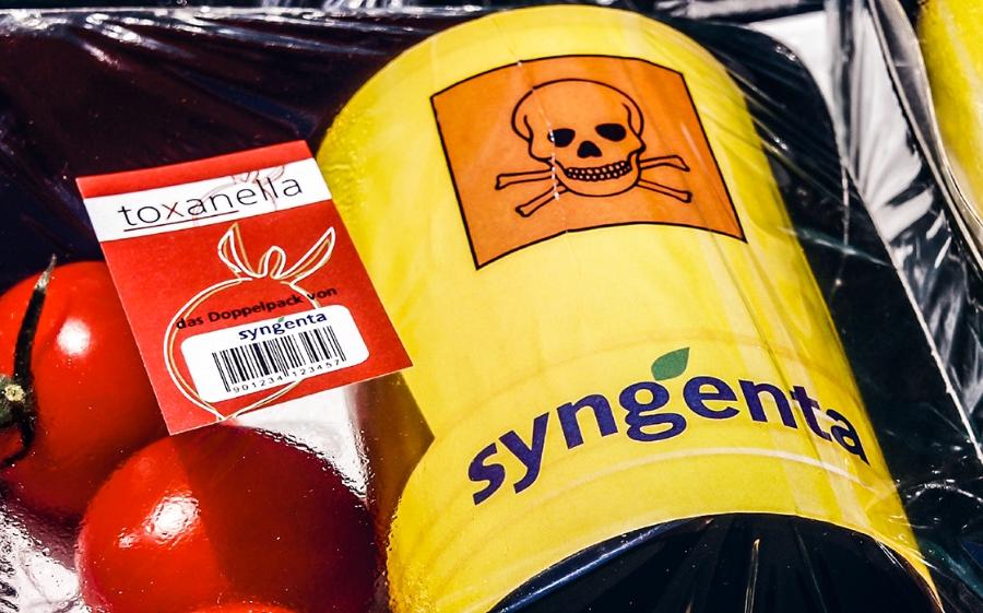 Syngenta_GiftWeb