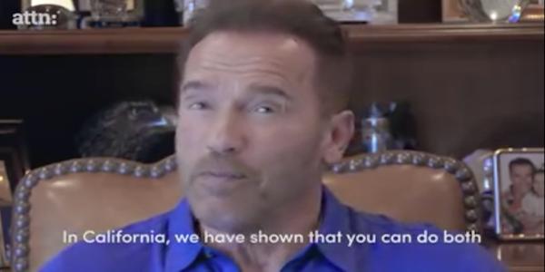 ARNOLD_SchwarzeneggerKopie