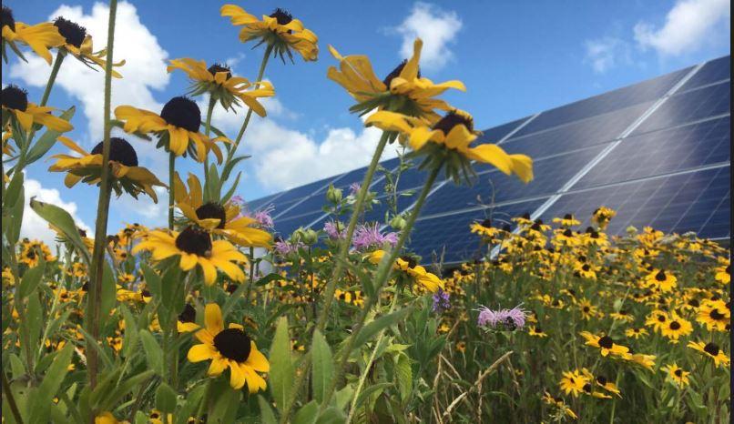 NREL_solarfarm
