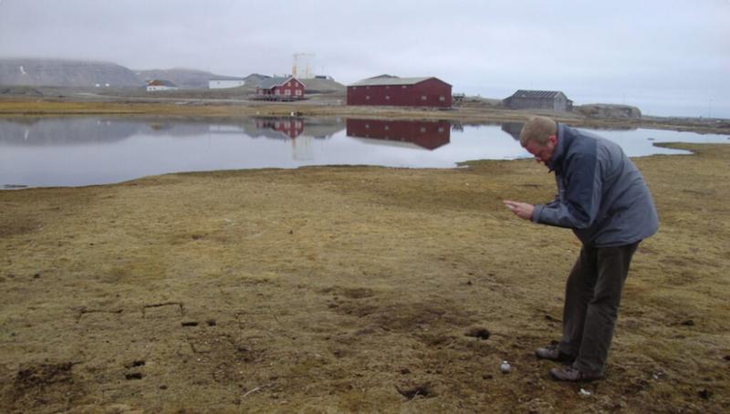 ArktisSuperbugResistenz