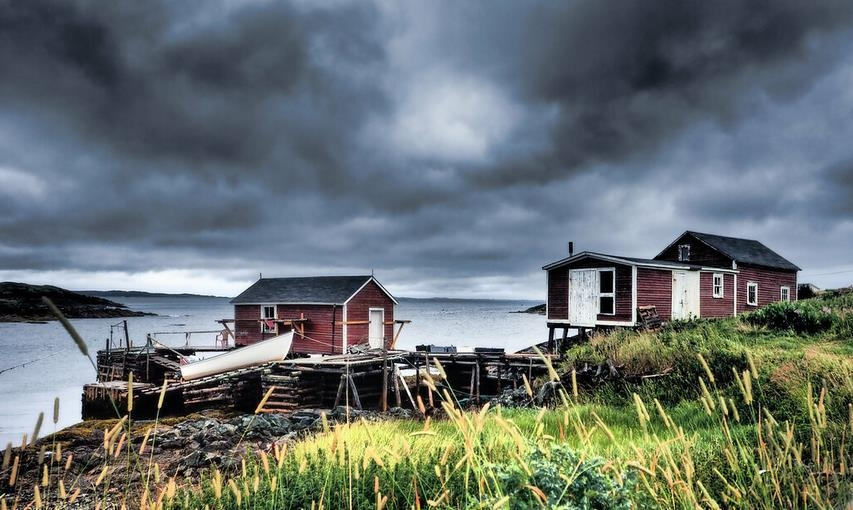 NeufundlandLabradorDunkleWolken