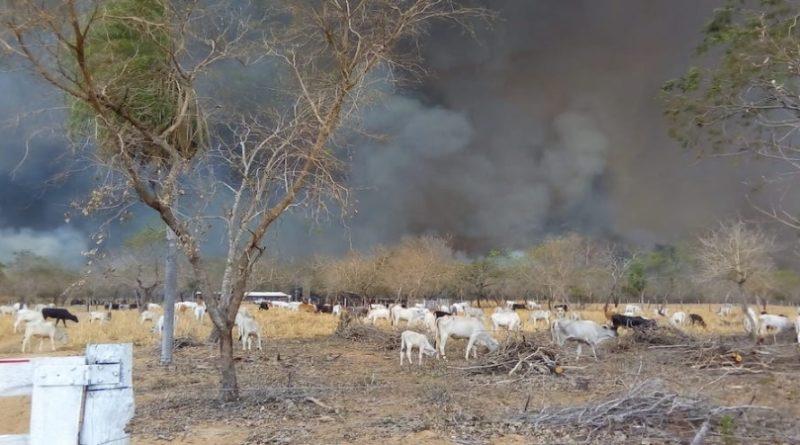 Bolivienbrand1