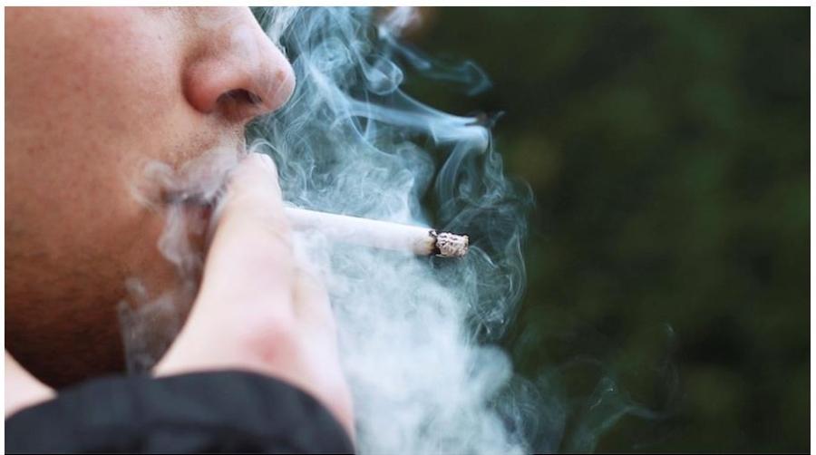 RaucherbildfrNZZArtikel
