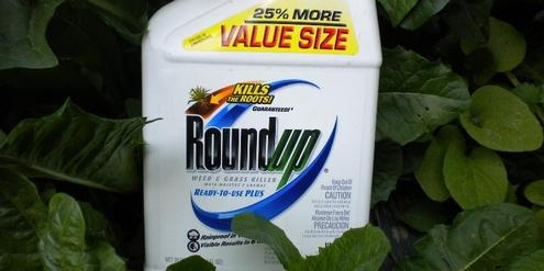 Roundup1