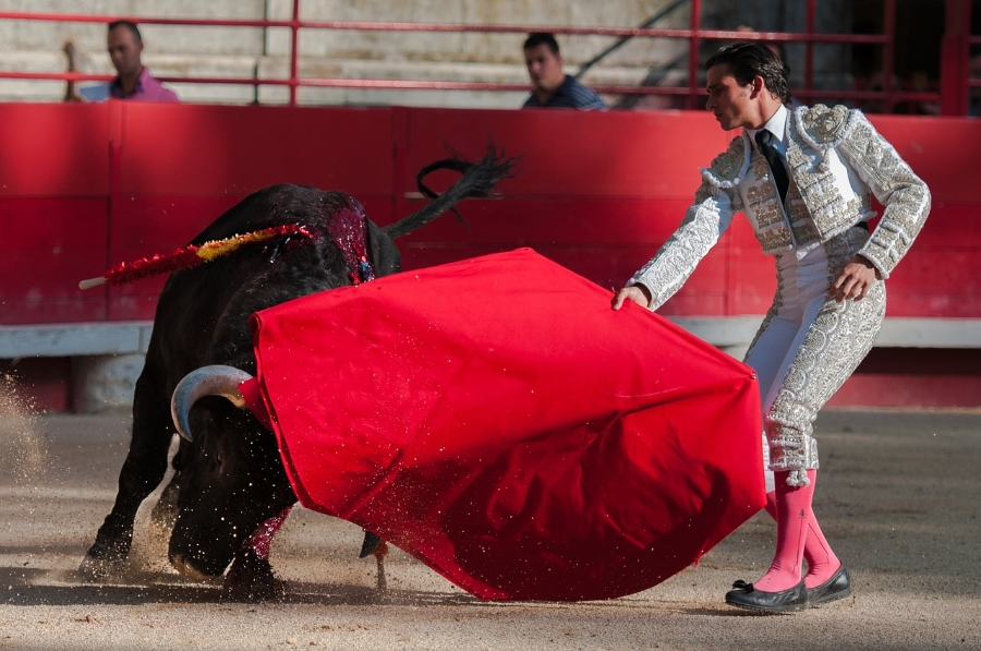 bullfight2012796_1280