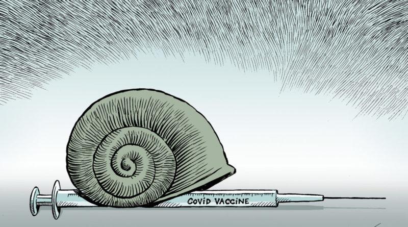 chappatte impfen