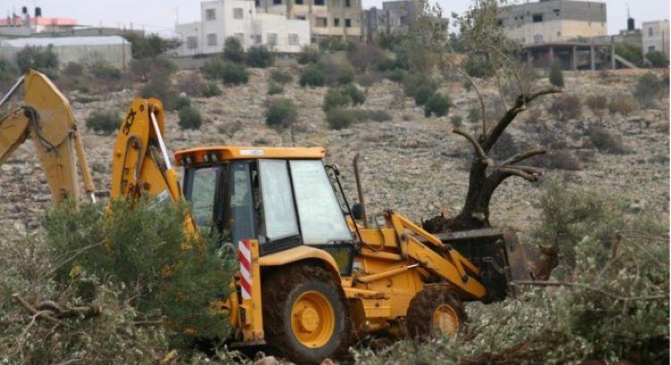 Trax in Palästina zerstört Lebensraum
