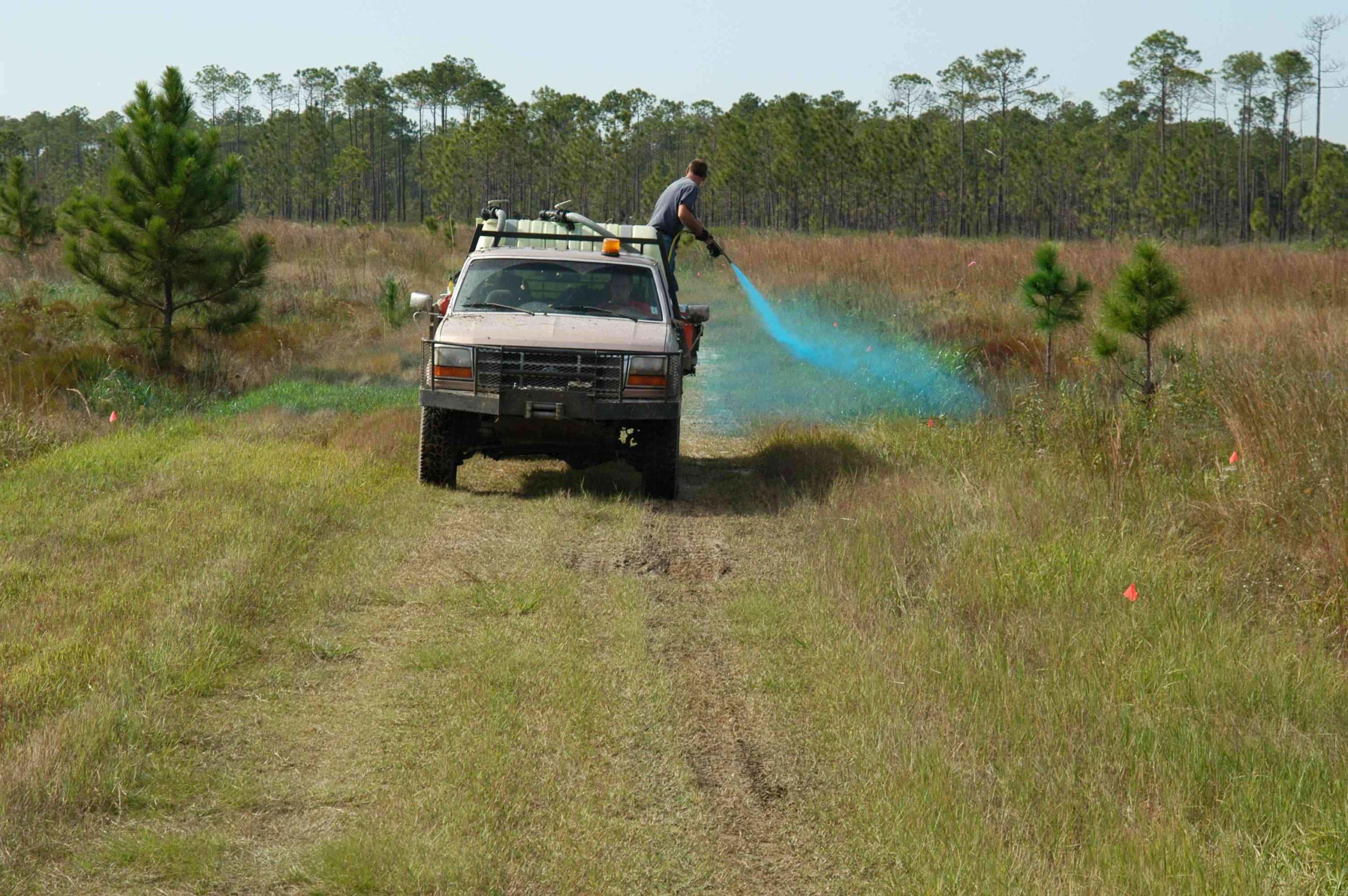 Pestizidvergiftungen werden weltweit häufiger