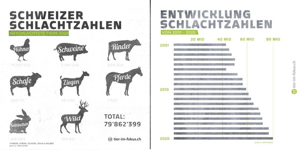Schlachtzahlen Schweiz 2020