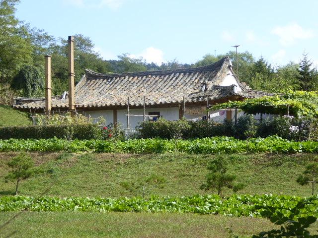 Nordkorea Bauernhause Gemüsegarten.R.B.