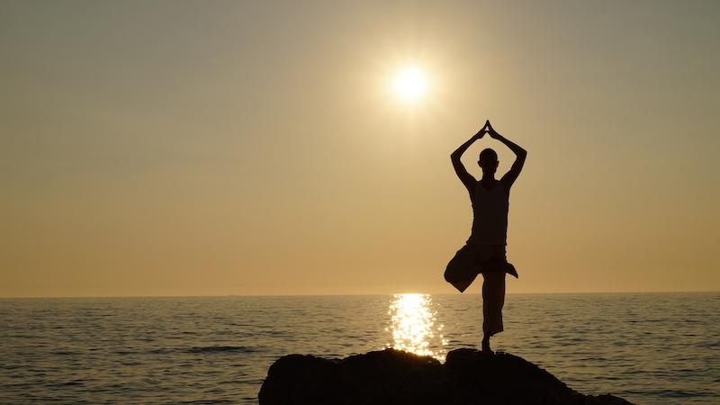 Yoga Vrischikasana - der Baum